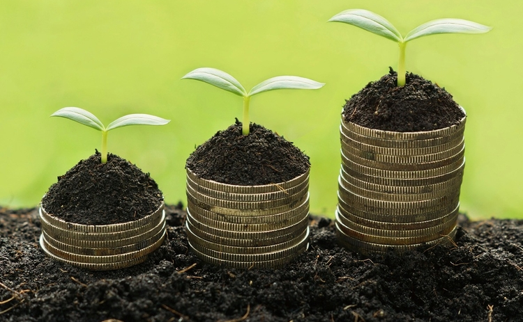 investment-trusts-plants