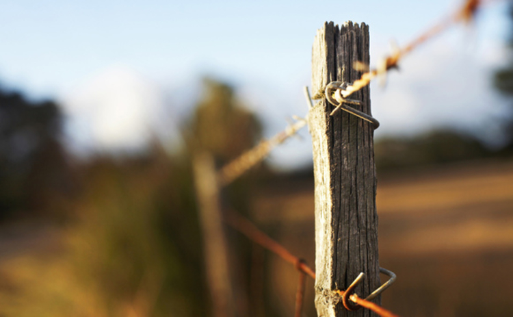 barbed-wire-and-wooden-fence-in-field