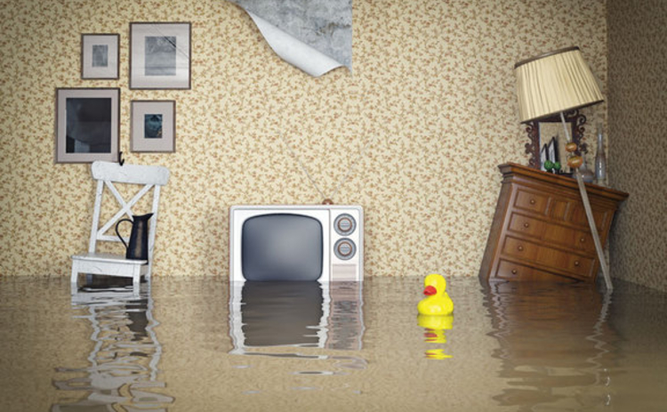 A flooded living room with a rubber duck in the middle of it